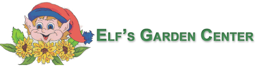 elfs garden center plants shrubs and tree
